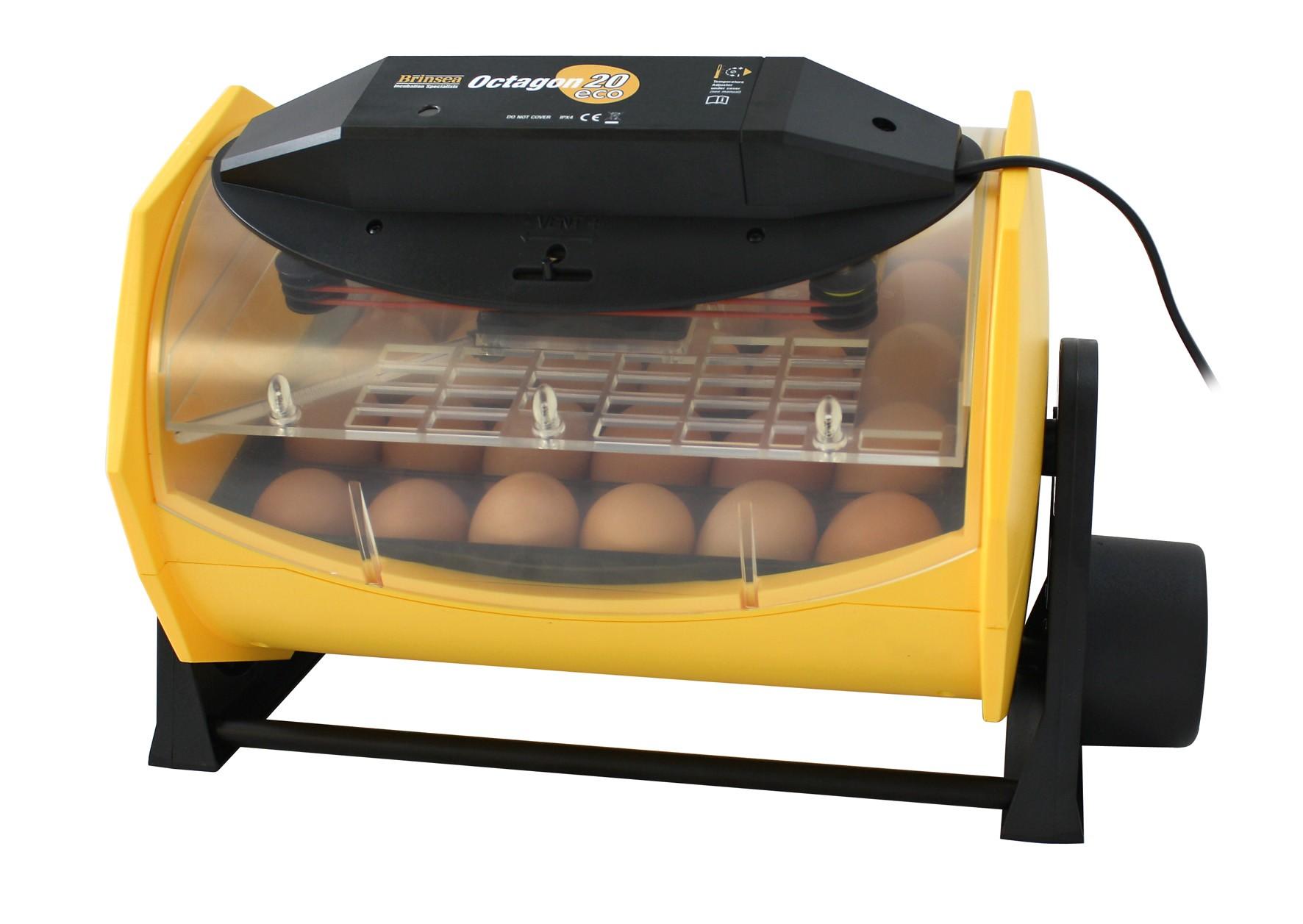 Brinsea Octagon 20 Eco Incubator