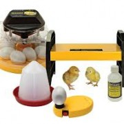 Brinsea Mini Eco Starter Pack