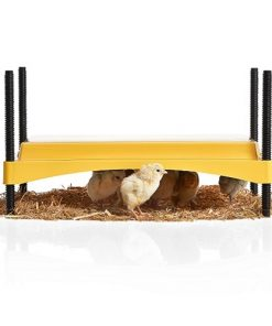 Brisnea EcoGlow Safety 1200 Chick Brooder